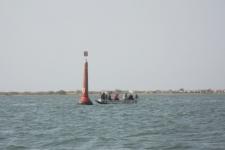 Sortie pêche Sine Saloum - Sénégal