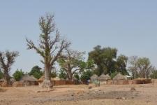 Sine Saloum Sénégal - Ô Coeur de Passy