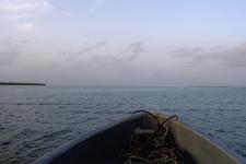Pêche en mer Sine Saloum - Sénégal