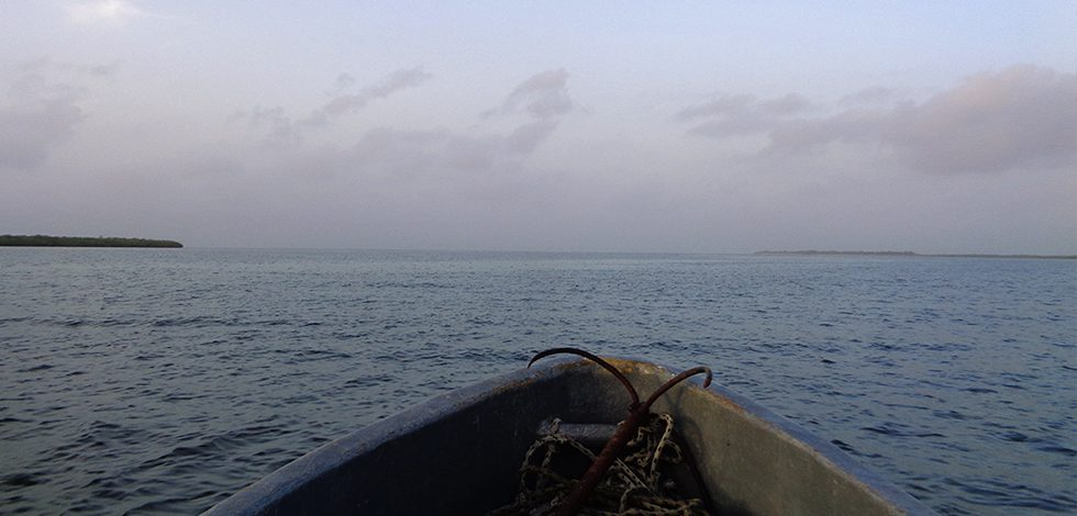 Sine Saloum Pêche
